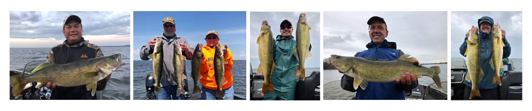 new_walleyes_and_more1002002.png